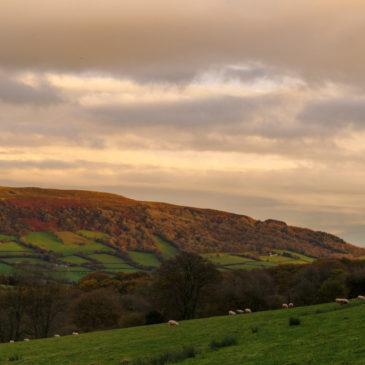 Welsh Wales