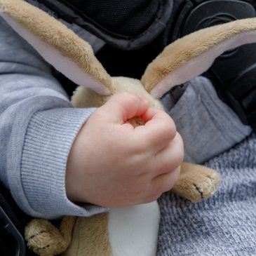 Poor Rabbit!